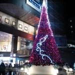 クレド岡山のクリスマスツリー