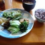 灘崎町野菜バイキングの「お食事があでん菜花」
