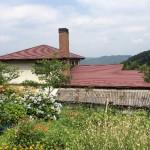 大佐町の紅茶農園・ペンション「アーリーモーニング」