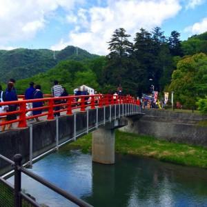日本一の種類を誇る和気神社の藤公園