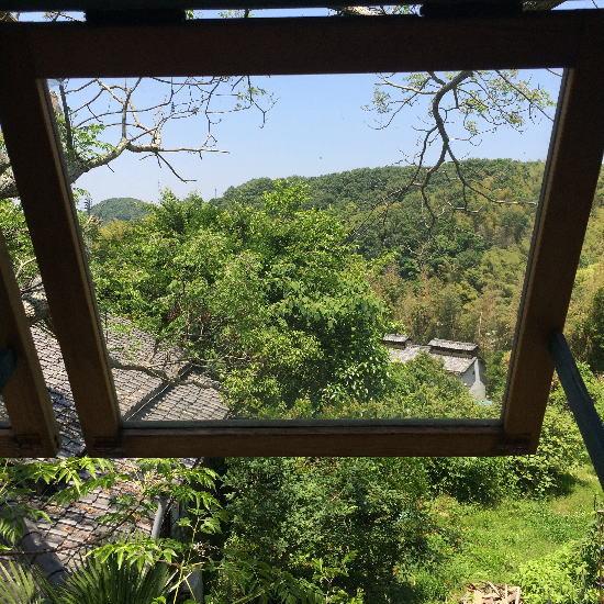 akatuki_treehouseからの眺望